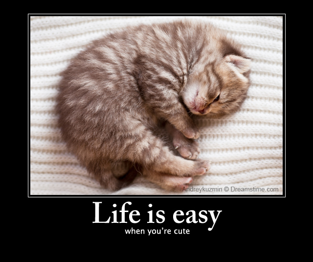 Cute Baby Sleeping Quotes: Meme Quotes » Cute
