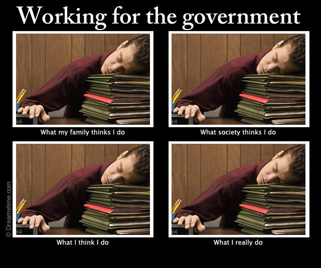 government job meme
