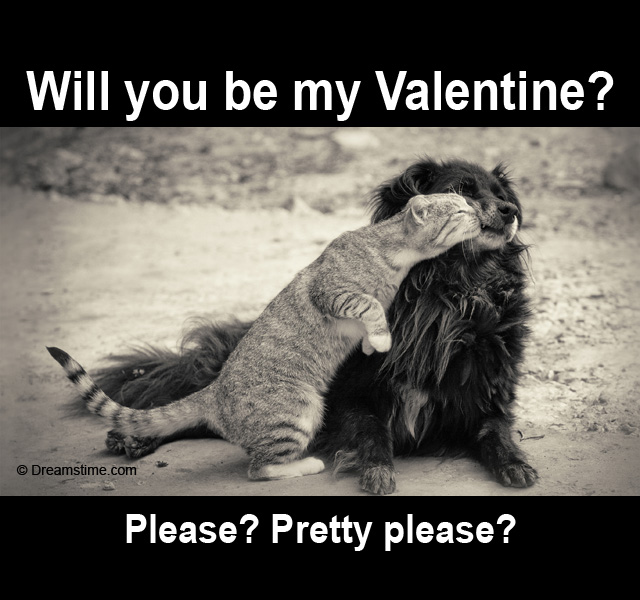 ugly dog valentines day memes - Funny Kissing Quotes QuotesGram