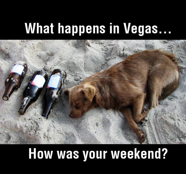 What Happens In Vegas Meme Quotes